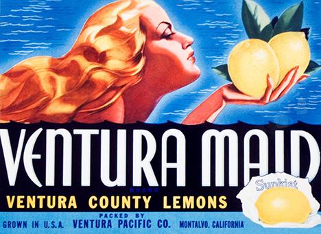 Ventura Pacific Co.